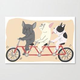 tandem bike Canvas Print