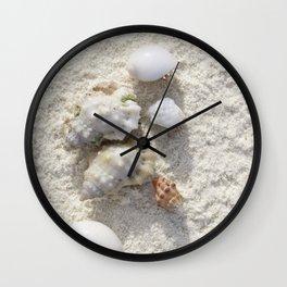 Hermit crabs having a clandestine meeting Wall Clock
