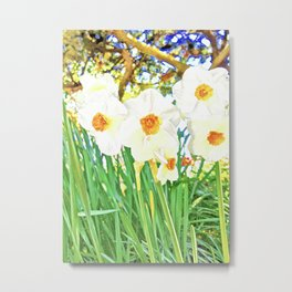 Bright Spring Narcissus Metal Print
