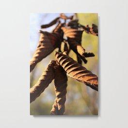 Stills-9 Metal Print
