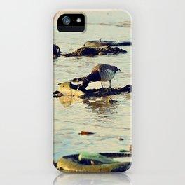 Trash Bird, #4 iPhone Case