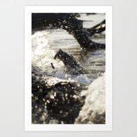 Wood Adrift Art Print