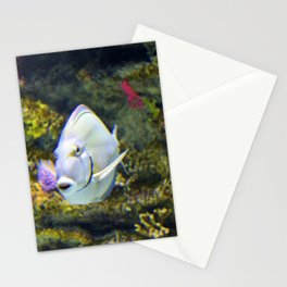Pompano Stationery Cards