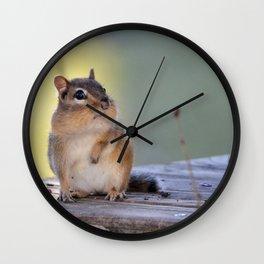 Chubby Wall Clock