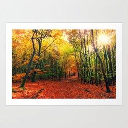 Serene Autumn Forest landscape Art Print