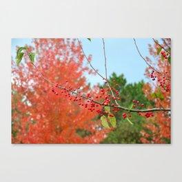 Fiery Fall Canvas Print