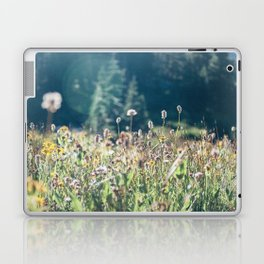 FALL FIELDS | 01 Laptop & iPad Skin