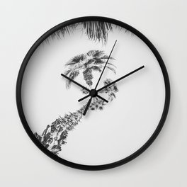 palm tree with clear sky background in black and white Wall Clock