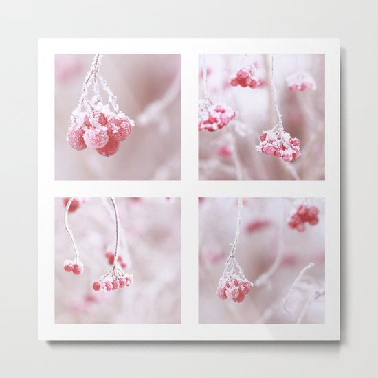Red Berries Quadro Metal Print