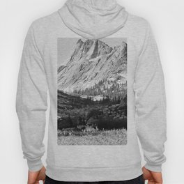 Ansel Adams Photographs of National Parks and Monuments Hoody