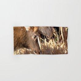 Watercolor Elk Juvenile 11, Bloody Heck Hand & Bath Towel