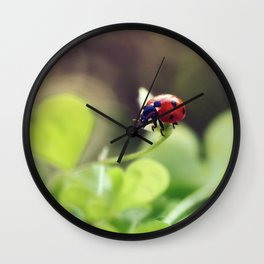 Ladybird, ladybird, fly away home.. Wall Clock