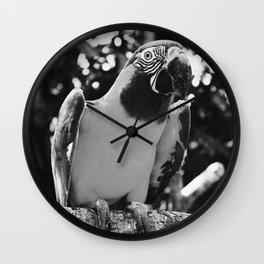 Black And White Photogenic Macaw Wall Clock