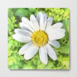 Radiant Daisy Watercolor Metal Print