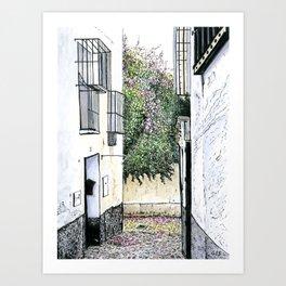 Albaicín Flowers, Granada, Spain Art Print