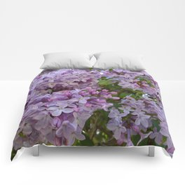 Lilac ~ Periwinkle Comforters