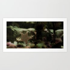 Soft and spiky Art Print