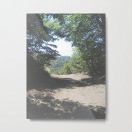 Patagonia IV Metal Print