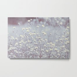 Wild Abandon -- Dreamy Fleabane Daisies in Lavender Gray Mist Metal Print