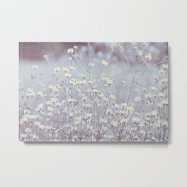 Wild Abandon -- Dreamy Fleabane Daisies in Lavender Gray Mist Metal Print
