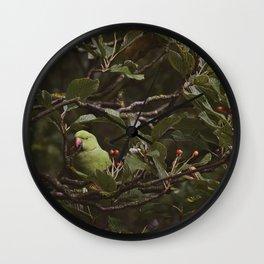 Hidden Look Wall Clock
