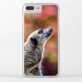 Inquisitive. Clear iPhone Case