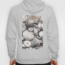 Sea Shell Collection Vintage Style Hoody