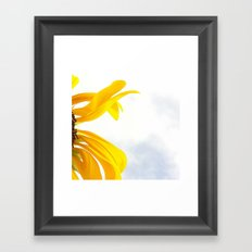 FLOWER 036 Framed Art Print