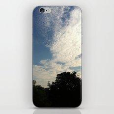 Summer Landscape iPhone & iPod Skin