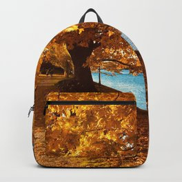 Perfect Autumn (Color) Backpack