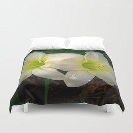 Glowing white daylily flowers - Hemerocallis Indy Seductress Duvet Cover