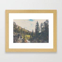 into the wild ...  Framed Art Print