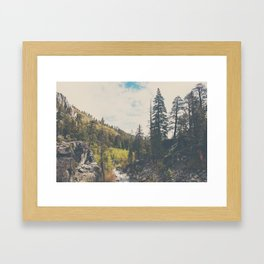 into the wild ...  Framed Art Print