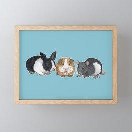 Dwarf rabbit, guinea pig and rat Framed Mini Art Print