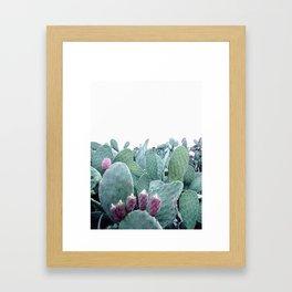 Mint Cactus Framed Art Print