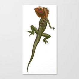 forrest lizard full colour Canvas Print