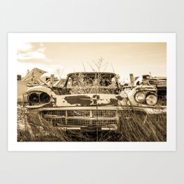 Thunderbird Field Art Print