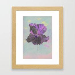 Dark Iris flower Framed Art Print
