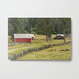 Colorado Country - 0558 Metal Print