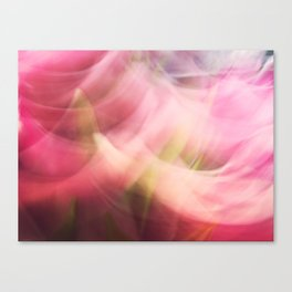 Swinging tulips Canvas Print
