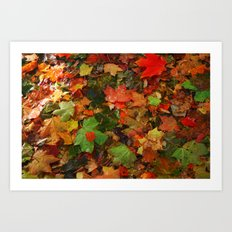 Lotta Leaves Art Print