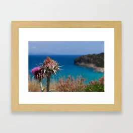 CretanThistle And Sea Framed Art Print