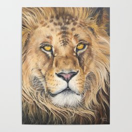 Lion with Golden Eyes Poster