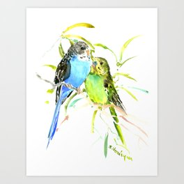 Budgies, love bird green blue decor Art Print