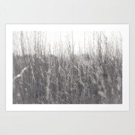 Autumn prairie Art Print