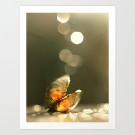 Mussel In The Bokeh Light... Art Print