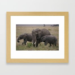 Wild Elephant Mother and Child Framed Art Print