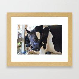 Moo Framed Art Print