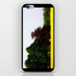 The Changing Colors Of Fall  iPhone Skin