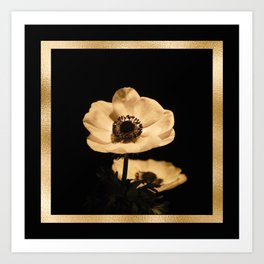 Anemone Flowers, Black with Golden Frame, Floral Nature Photography Art Print